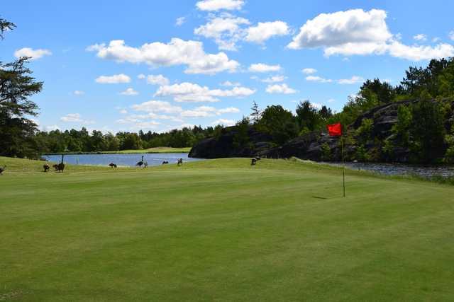 Pine Grove Golf Club in Sudbury