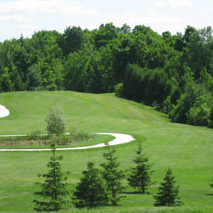 Timber Run GCC