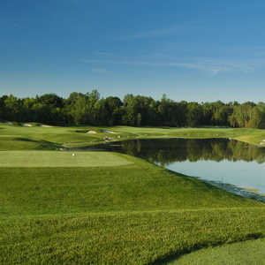 Cardinal GC - RedCrest: #7