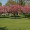 A view of hole #9 with the cherry trees in blossom in background at Cherry Hill Club