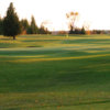 A view of a green at Dunsford Golf and Country Club