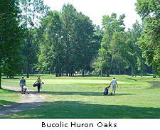 Bucolic Huron Oaks